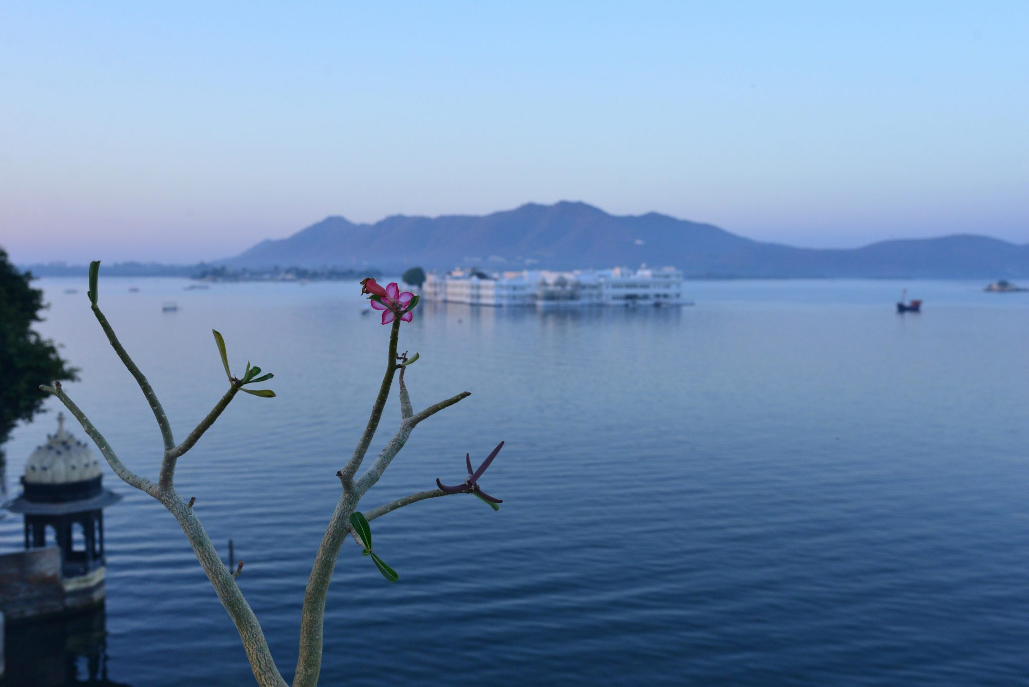 Lake Pichola at dawn