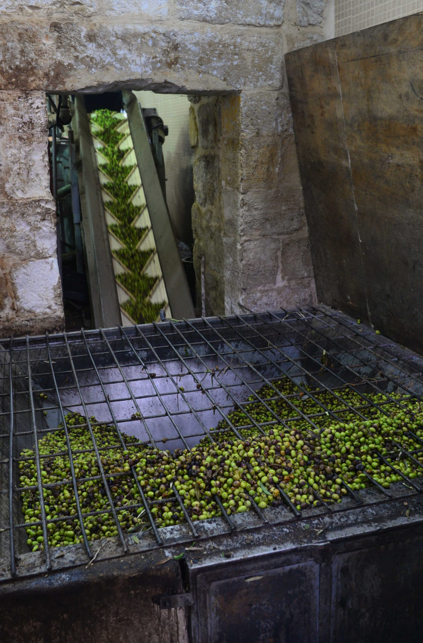 Olive Oil Factory, Ramallah