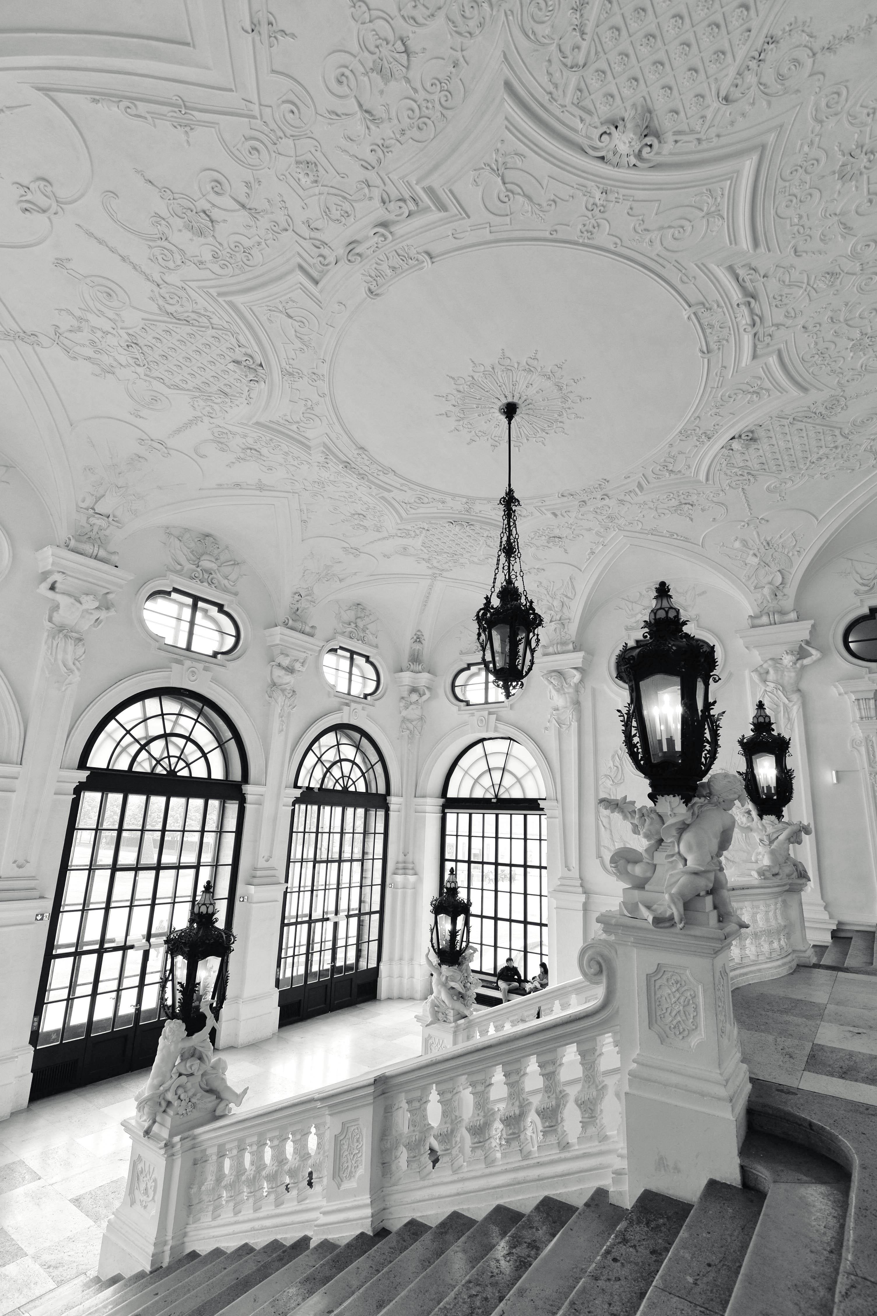 Vienna elegance